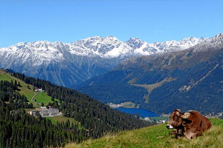 Schatzalp Kt. Graubünden / Schweiz